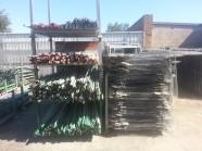 Scaffold Storage - Braces